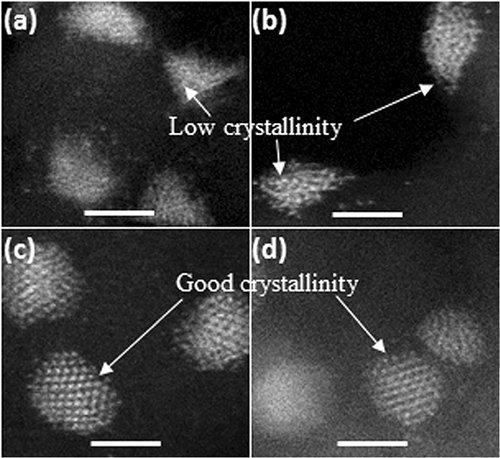 纳米碳材料负载金属催化剂研究取得新进展