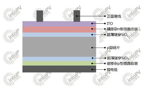 双面采用钝化接触技术的选择性接触电池结构